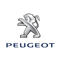 Peugeot dashboard lights and meaning