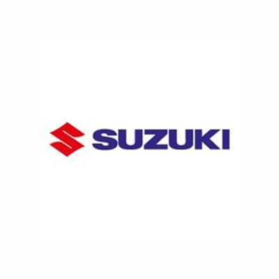 Suzuki dashboard lights and meaning